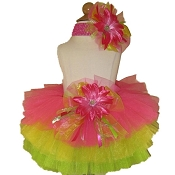 Birthday Tutu Citrus Brites